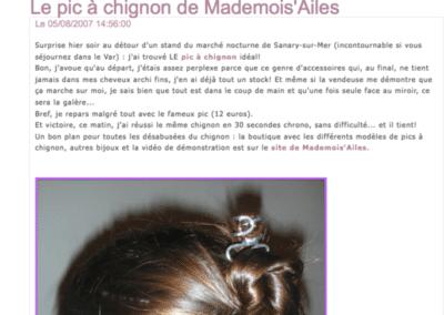 blog pic à cheveux 2007